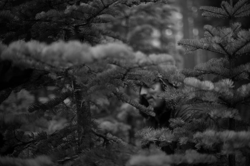 ChristmasTree14-31